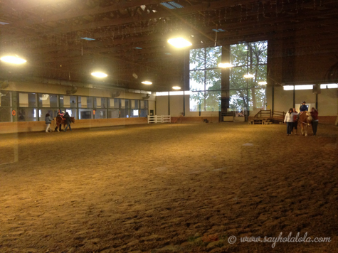 Hippotherapy-2