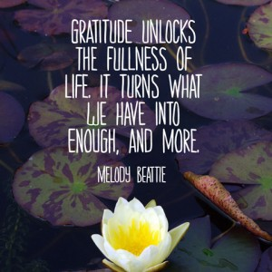 quotes-gratitude-unlocks-melody-beattie-480x480